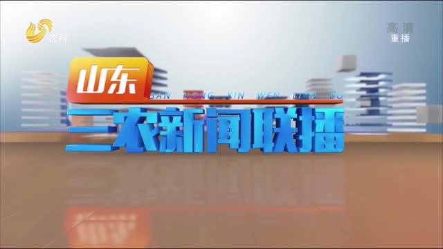 2021年09月22日山东三农新闻联播完整版