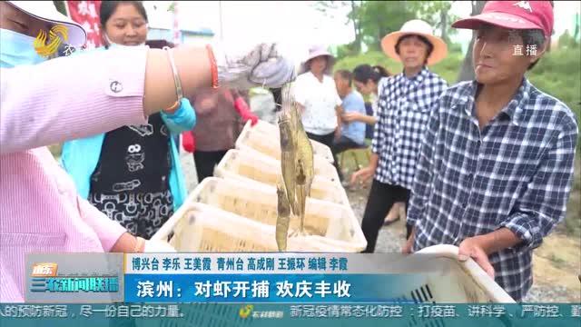 【庆丰收 感党恩】滨州:对虾开捕 欢庆丰收