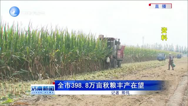 全市398.8万亩秋粮丰产在望