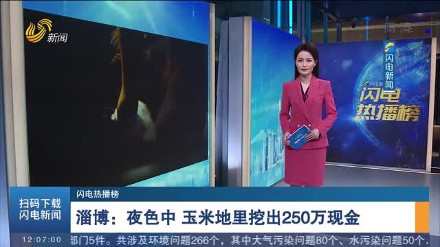 【闪电热播榜】淄博:夜色中 玉米地里挖出250万现金