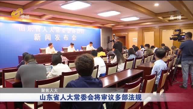 【聚焦人大】山东省人大常委会将审议多部法规