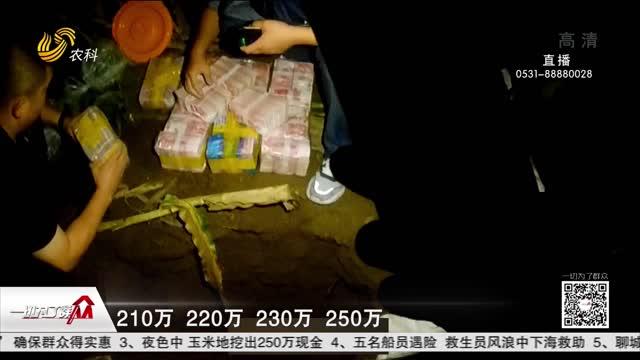 夜色中 玉米地挖出250万现金