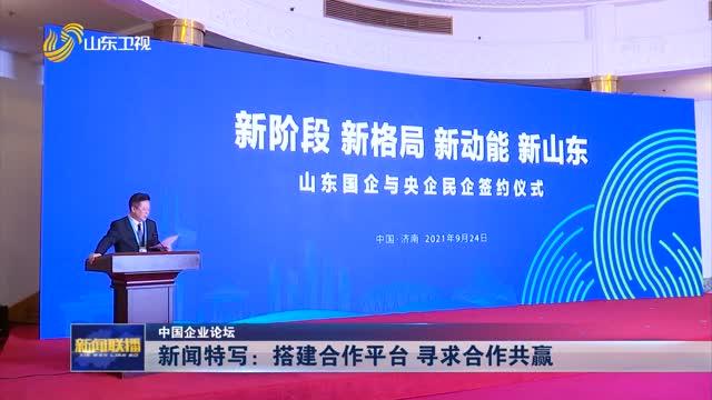 【中国企业论坛】新闻特写:搭建合作平台 寻求合作共赢