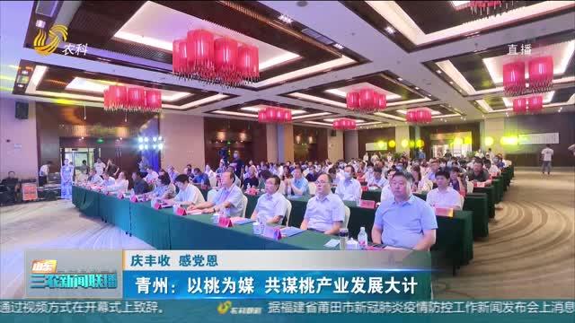 【庆丰收 感党恩】青州:以桃为媒 共谋桃产业发展大计