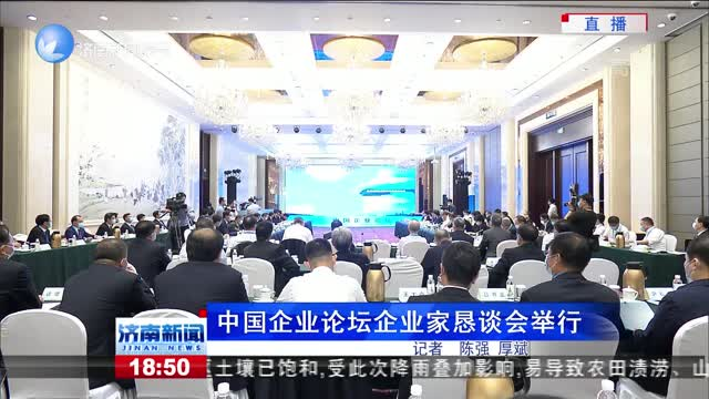 中国企业论坛企业家恳谈会举行