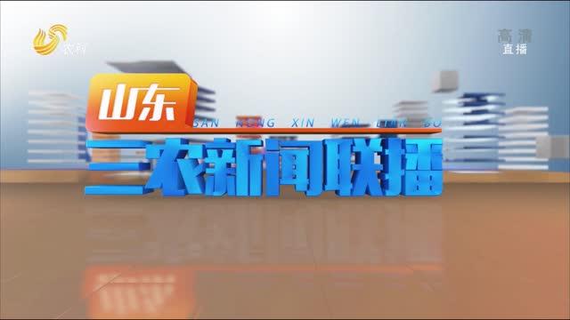2021年09月24日山东三农新闻联播完整版