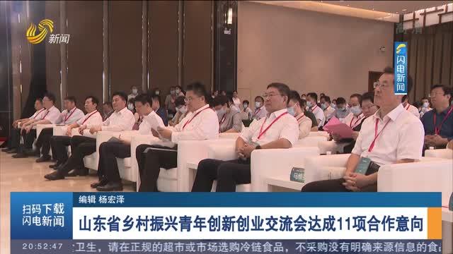 山东省乡村振兴青年创新创业交流会达成11项合作意向