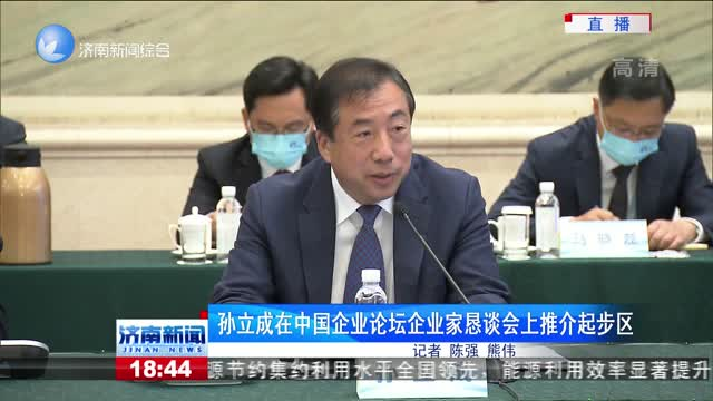 孙立成在中国企业论坛企业家恳谈会上推介起步区