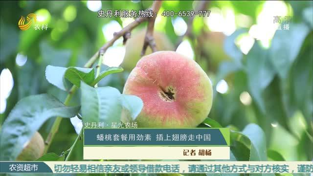 【史丹利·星光农场】蟠桃套餐用劲素 插上翅膀走中国