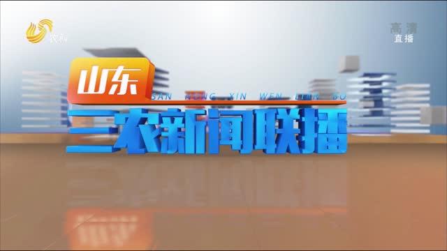 2021年09月29日山东三农新闻联播完整版
