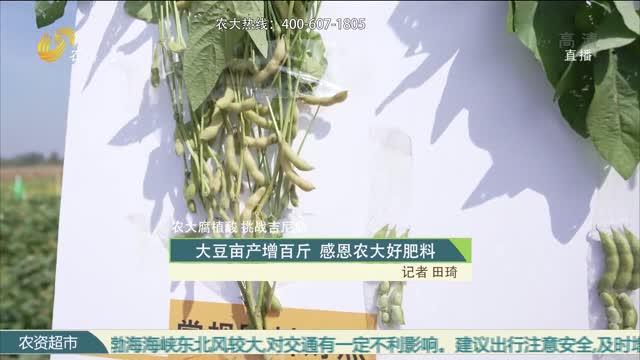 大豆亩产增百斤 感恩农大好肥料
