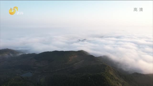 欣赏壮美的云海景观