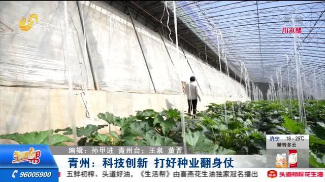 青州:科技创新 打好种业翻身仗
