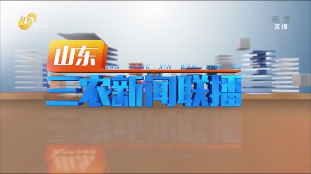 2021年10月01日山东三农新闻联播完整版