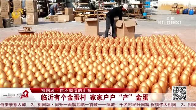 """【祖国颂·你不知道的山东】临沂有个金蛋村 家家户户""""产""""金蛋"""
