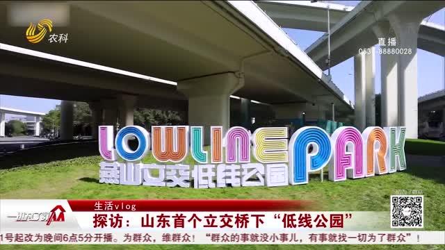 """【生活vlog】探访:山东首个立交桥下""""低线公园"""""""