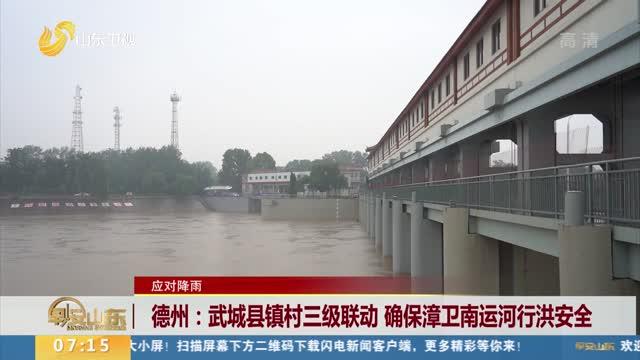 【应对降雨】德州:武城县镇村三级联动 确保漳卫南运河行洪安全