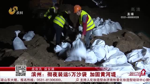 【战秋汛 保安澜】滨州:彻夜装运5万沙袋 加固黄河堤