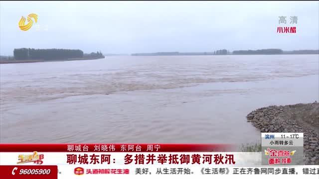 聊城东阿:多措并举抵御黄河秋汛