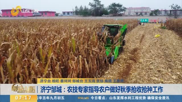 济宁邹城:农技专家指导农户做好秋季抢收抢种工作