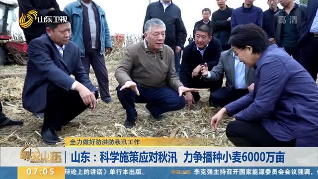 【全力做好防洪防秋汛工作】山东:科学施策应对秋汛 力争播种小麦6000万亩