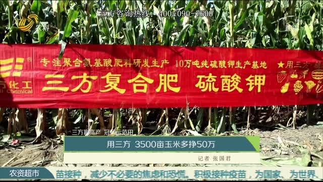【三方赢高产 冠军示范田】用三方 3500亩玉米多挣50万