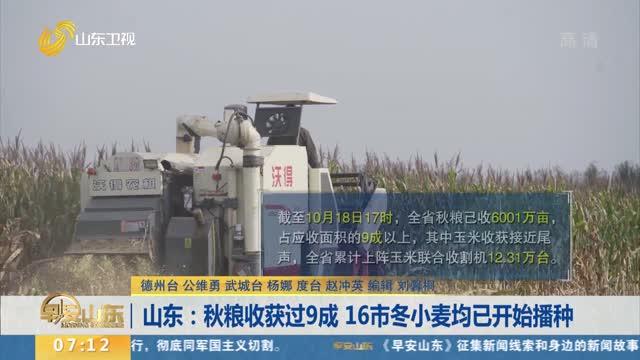山东:秋粮收获过9成 16市冬小麦均已开始播种