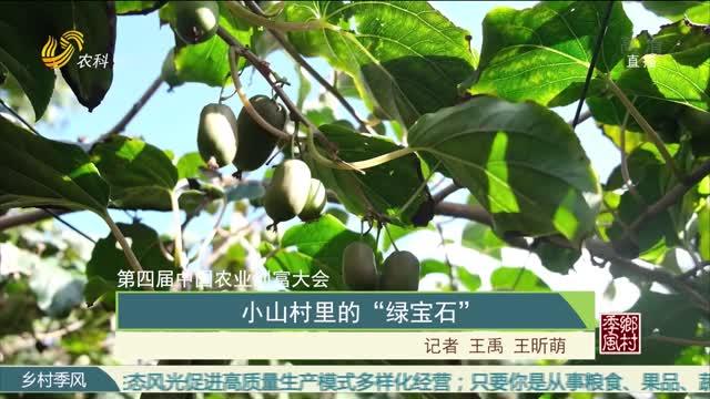 """【第四届中国农业创富大会】小山村里的""""绿宝石"""""""