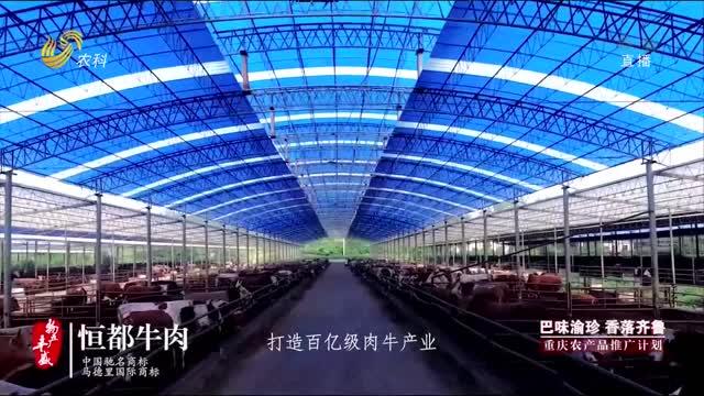 """""""巴味渝珍 香落齐鲁""""重庆农产品推广计划(丰都篇)"""