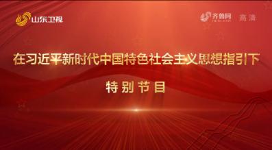 在习近平新时代中国特色社会主义思想指引下·特别节目