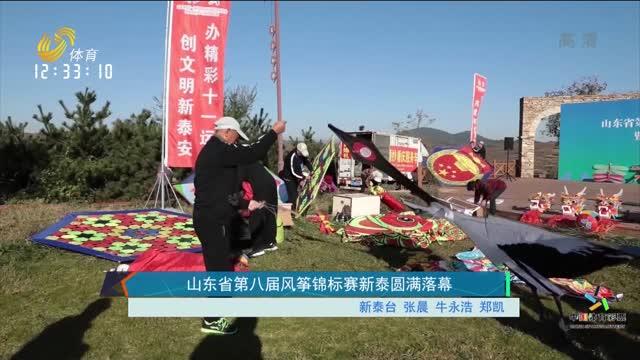 山东省第八届风筝锦标赛新泰圆满落幕