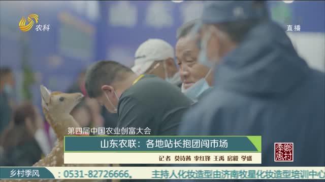 【第四届中国农业创富大会】山东农联:各地站长抱团闯市场