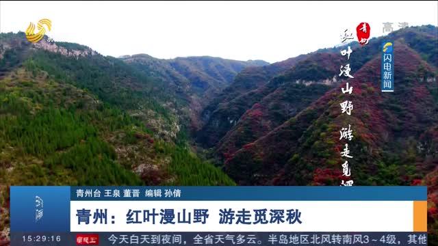 【诗画山东】青州:红叶漫山野 游走觅深秋