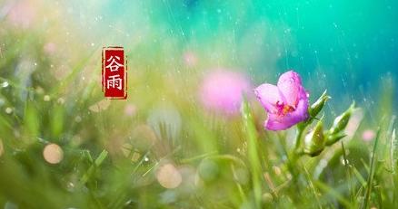 谷雨节气练静功可以轻松防疾病