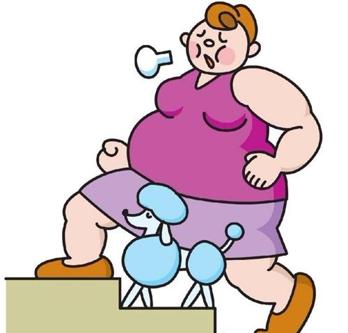 中年女性减肥三误区
