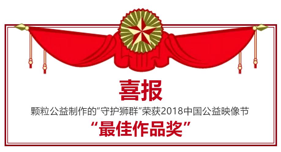 """【喜報】""""守護獅群""""榮獲2018中國公益映像節""""最佳作品獎"""""""