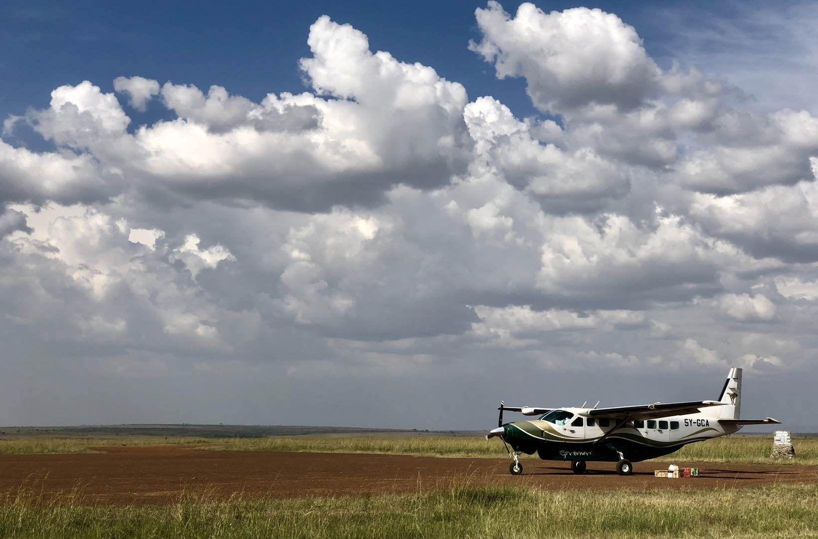 """Hello,Simba""启路未来守望栖息地肯尼亚之旅即将启程,关于野生动物大迁徙的那些知识你准备好了吗?"