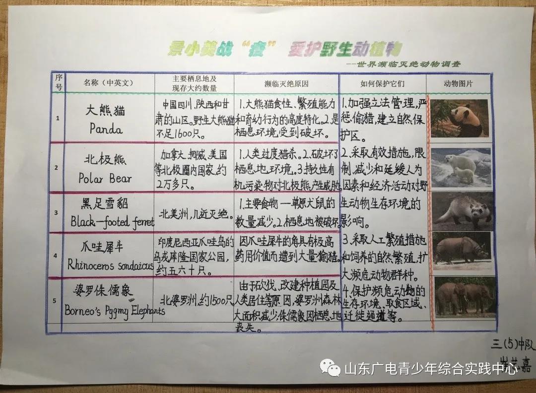 """济南市景山小学最美战""""疫""""·爱护野生动物"""