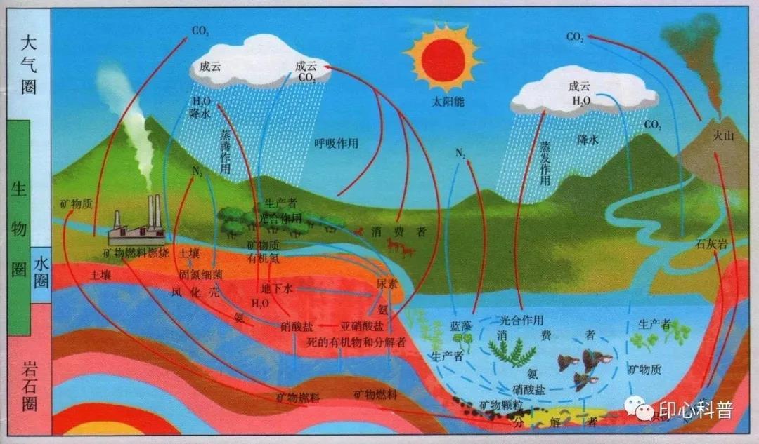 自然教育||地球上最大的生命系统——生物圈